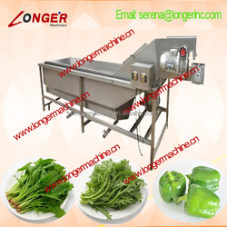 High quality Bubble Type Leafy Vegetable Washing Machine