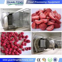 fruit processing equipment / food freeze dryers sale