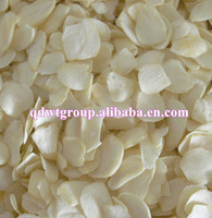 white dried garlic flakes without root