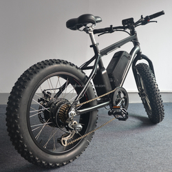 2015 high quality LCD display outer 7 speed fat tire dirt bike