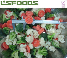 IQF FROZEN MIXED VEGETABLES 2014 NEW PRODUCTS