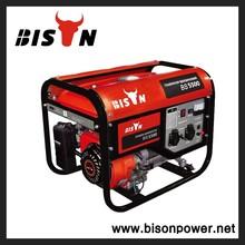BISON(CHINA) free energy generator, power generator, generator for sale