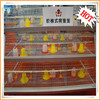 Chicken Farm/Poultry Cage