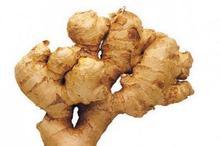 Vietnam fresh ginger new crop