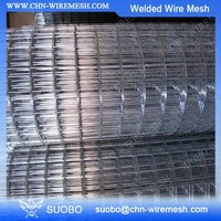 Welded Wire Mesh Animal Cages 2X2 Galvanized Welded Welded Wire Mesh Fence Panels In 12 Gauge
