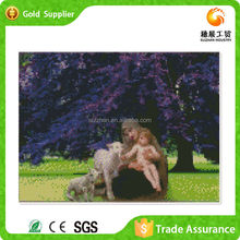 Zhejiang manufacturer supply Wall Art 5D Crystal Diy Diamond Beautiful Acrylic Paintings