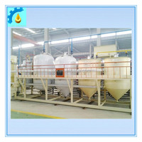 Hot Sell Palm Oil Refinery Machine Oil Purification Equipment