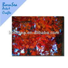 plain painting canvases