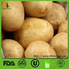 Organic Cultivation Type and Potato Product Type fresh potato
