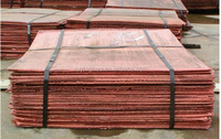 Get Trade Finance Facilities for Copper Cathode Importers & Exporters