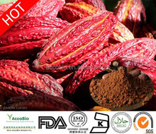 China supply standard, Top quality Cocoa Bean Extract powder/Theobromine 20%