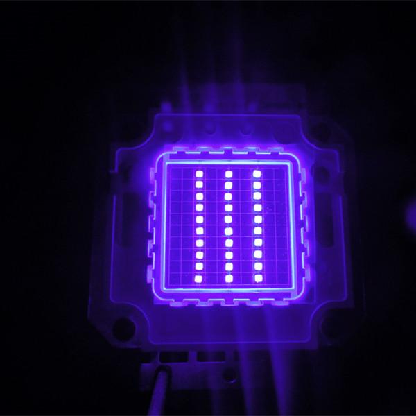 30W Uv Led 420nm Ultraviolet Light Source Chip