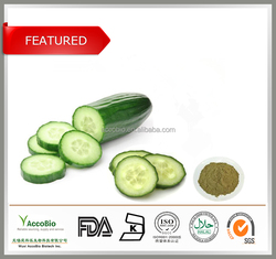 Natural Fruit Extract Cucumber Extract In Bulk