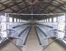 Chicken House 4-6 Hens On Wheels Un Assembled