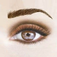 Best Price Wholesale False Eyebrows, Real Hair Eyebrows, Cheap Real Human Hair Extensions