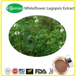 Free sample Mnubium Incisum Extract, Lagopsis Supina Extract, Mrrubium Incisum Extract