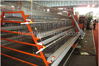 Galvanised chicken cage with feeding and manure cleaning machine