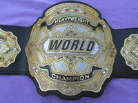 Real World Heavyweight Wrestling Boxing Championship Title Belt