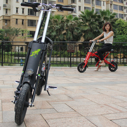 Aluminum Alloy Folding E Scooter/Electric E Bike Electrical Motorbike