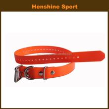 day glo orange dog sex video tag dog training collar