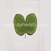 green leaf wall art hanging