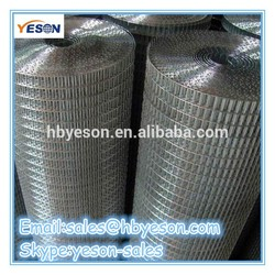 welded rabbit cage wire mesh / bird cages