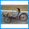 3 wheel recumbent bike for disabled people