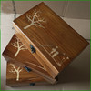 Fantastic Wooden Trinket Box with Antique Latches