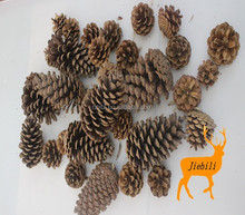 2015 wooden pine cone nature christmas ornament hanging decoration