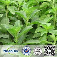 Erythritol/Stevia Mixture