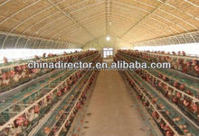professional design and help assemble prefabricated poultry shed and chicken shed and house