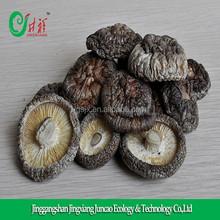 Dehydrate Mushrooms Supplier for sale Organic Mushroom, Shiitake Mushroom on sale