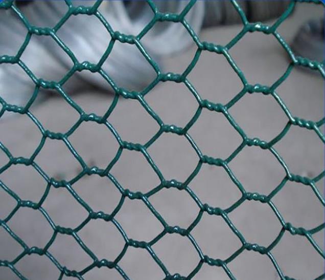 Hexagonal Chicken Wire Mesh,Pvc Coated Hexagonal Wire Mesh,Hexagonal ...