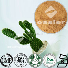 100%Natural 10:1 Cactus Extract/Factory Price