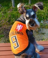 Wholesale Football dog clothes suit for puppy and Medium dogs