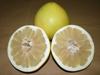 New crop fresh pomelo wholesale fruit packaging