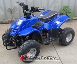 High Speed Powerful 500w Electric Quads CE