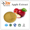 Pure Natural Plant Extract Apple Extract Food Grade