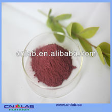 Dried Red Beet Root Powder/Natural Color/Natural Pigment--Antioxidant