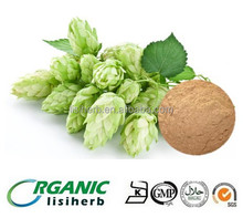 High quality 100% Natural Hops / beer hops / hops flower extract flavonoids powder