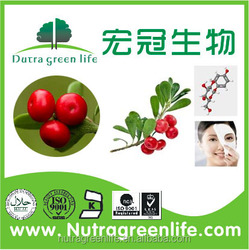 Alpha Arbutin/comestic products High purity 99% Arbutin/alpha arbutin powder/ Deoxyarbutin