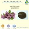 GMP quality Red Clover Extract Daidzein 98% best price