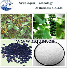 High quality black pepper extract powder 4:1,10:1, 20:1