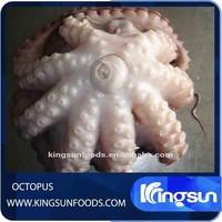 Good Price Frozen Octopus