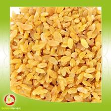 High quality sultana raisin dried golden raisins