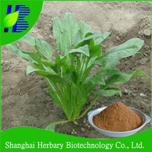 Factory supply liquid spinach extract for raw supplement ingredients
