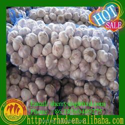 Wholesale Normal White Garlic Natural Garlic Price