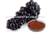 Best Selling OPC 95% Pure Natural Grape Seed Extract Powder