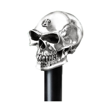 Hallmarked Silver Skull Resin Blind Walking Stick