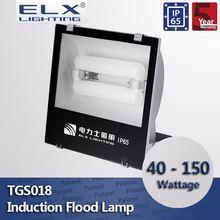 ELX Lighting induction flood light inductive timing light